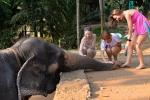 Слоник с девушками