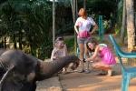 Еще раз слоник с девушками